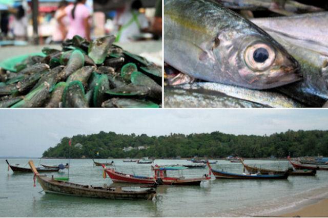 החלטה מס' 2: לאכול יותר דגים