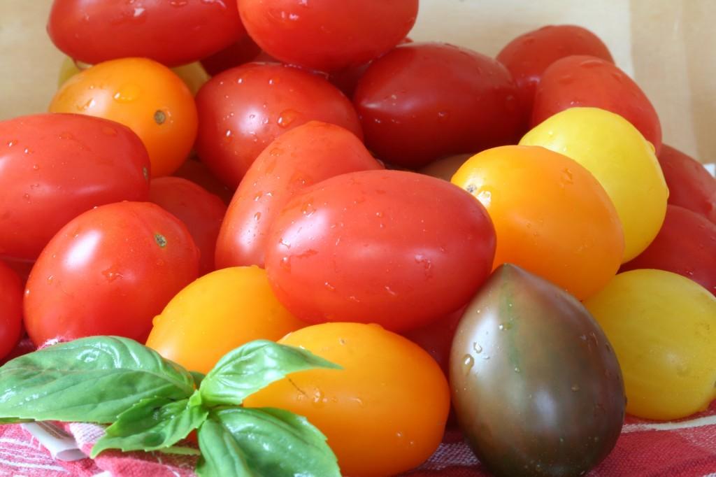 תמיד משמחות. עגבניות